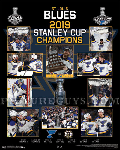 Pictureguys Com Nhl National Hockey League Stanley Cup Champion Plaques